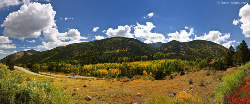 Fall in Colorado #3