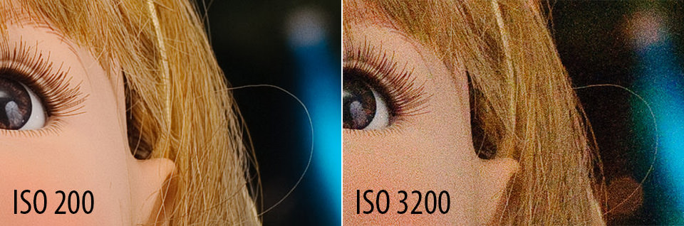Iso Camera Meaning >> Understanding Iso For Beginners Photography Basics