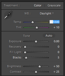 Adjusting Temperature and Tint in Lightroom