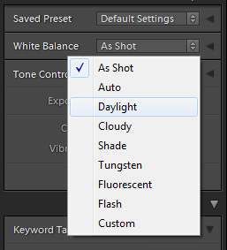 How to change White Balance in Lightroom