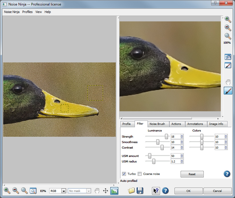 Photo Noise Reduction Tutorial