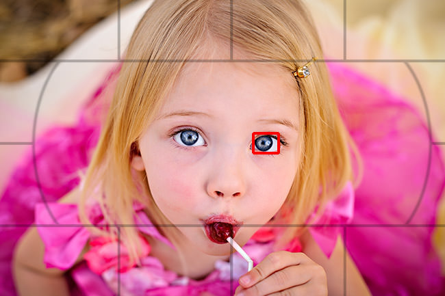 Image result for Autofocus in DSLR photography