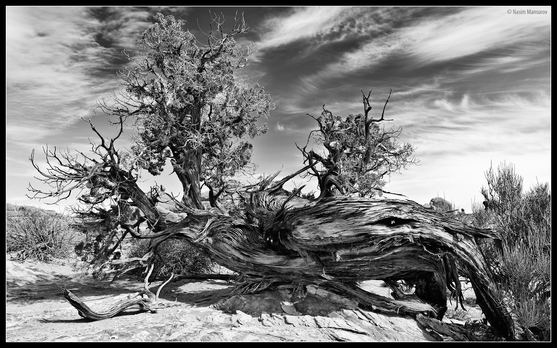 How To Take Black And White Photography