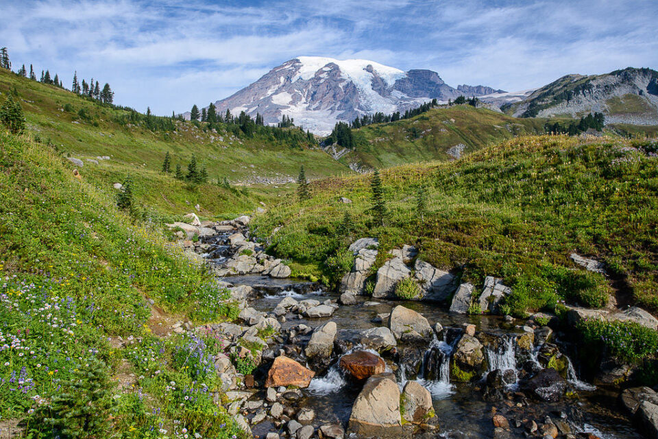 Mt Rainier Stream