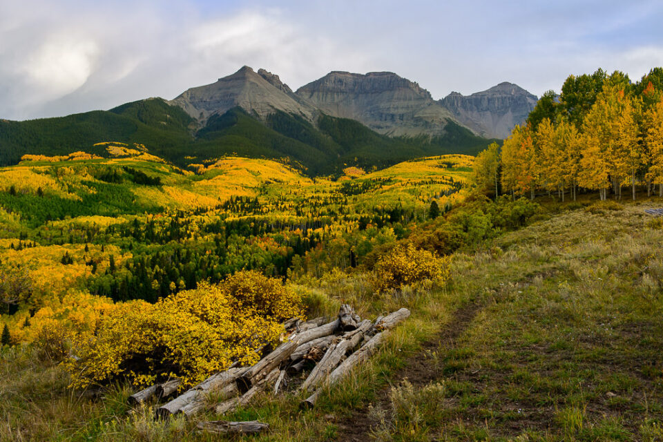 San Juan Mountains with Peak Colors