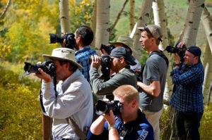 Spots Available for our Upcoming Colorado Fall Workshops