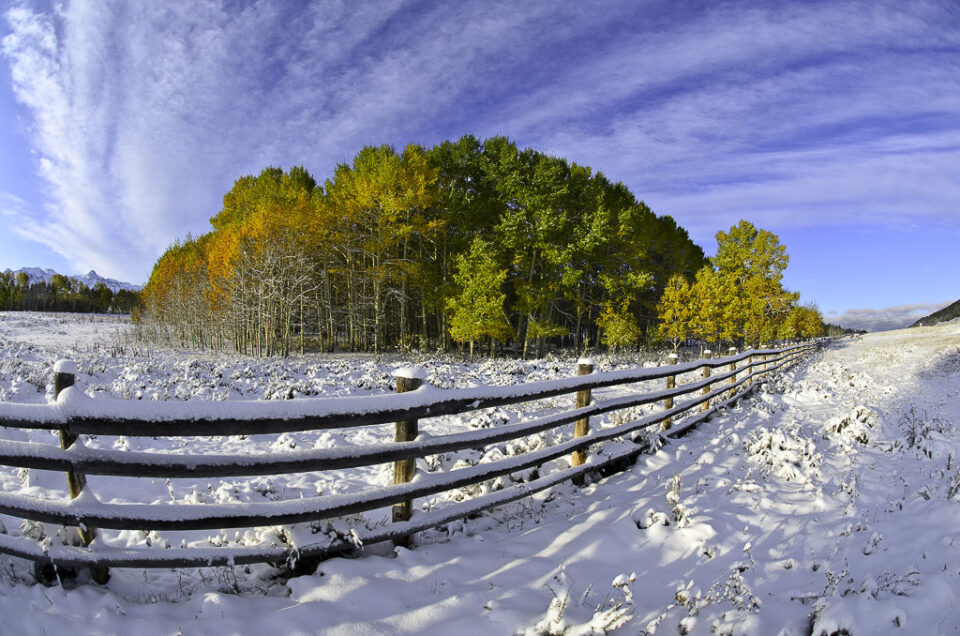 Snowy Landscapes (4)