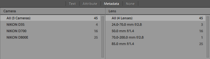 Lightroom Filter Bar