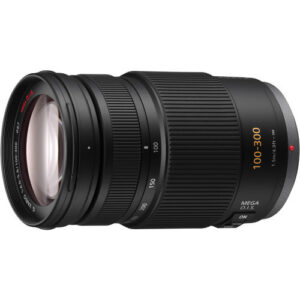 Panasonic Lumix G Vario 100-300mm f/4-5.6 OIS