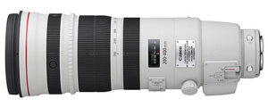 Canon 200-400mm f/4 IS 1.4x