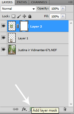 Create Layer Mask