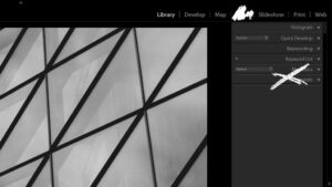 Lightroom Interface Customization Tips