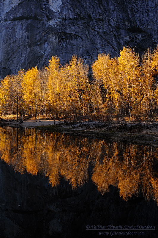 Yosemite in Autumn (8)