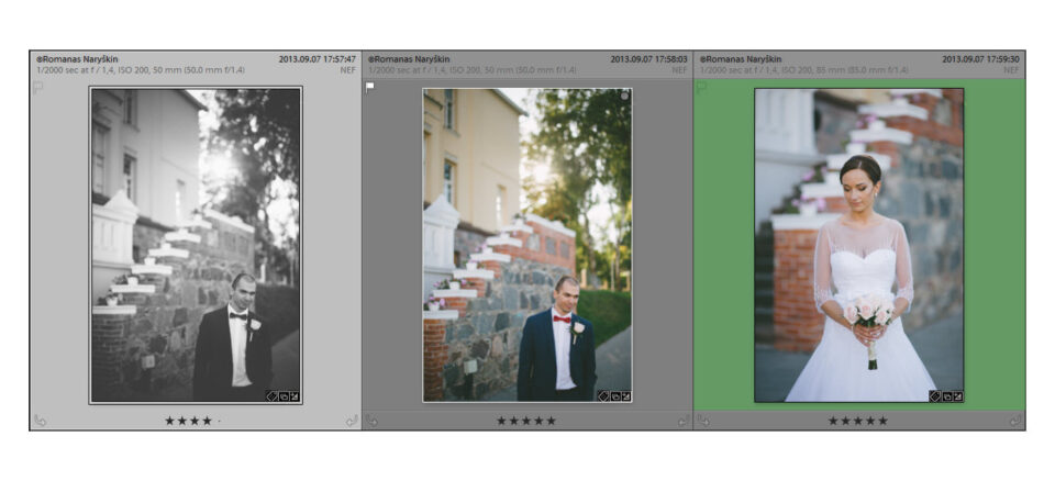 Lightroom Grid View Options