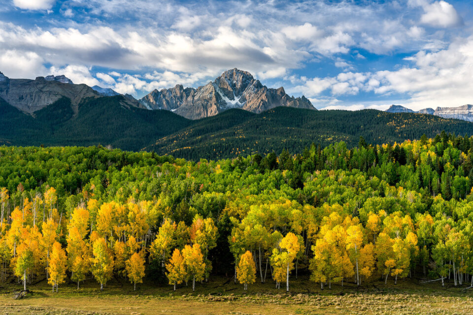 Mt Sneffels in Fall