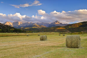San Juan Mountains Hay