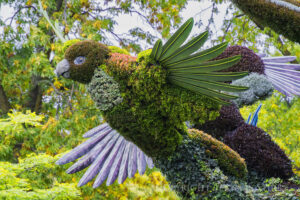 Mosaiculture – Capturing Images at Large Public Venues