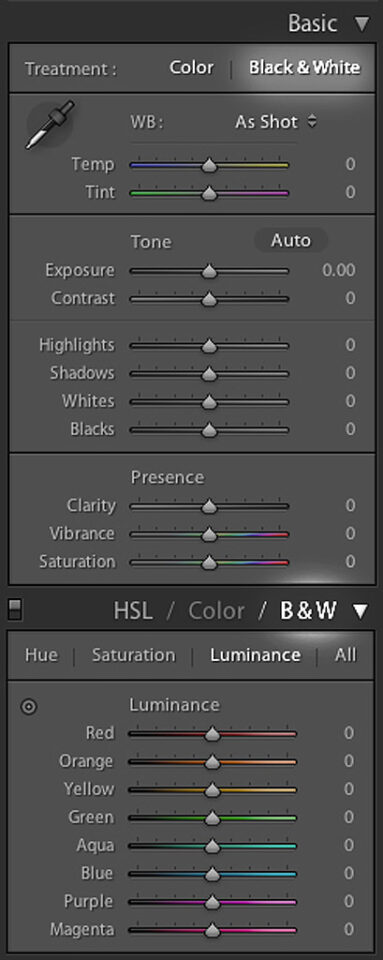 Lightroom Black and White Settings