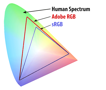 Human Spectrum vs sRGB vs Adobe RGB