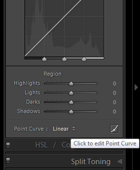 B&W With Lightroom_Edit Point Curve