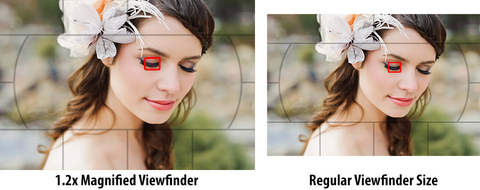Regular Viewfinder vs 1.2x Magnification