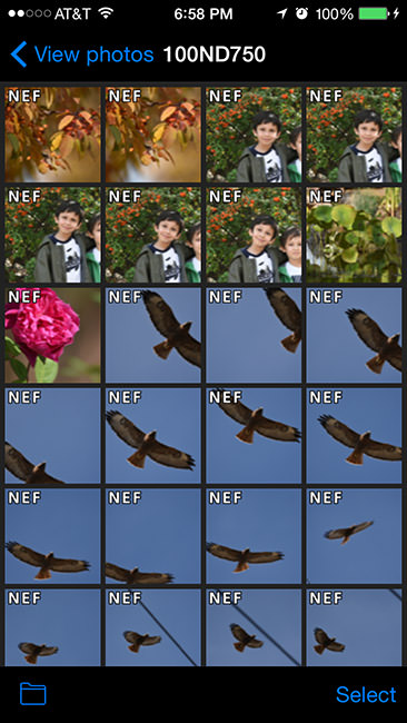 Nikon D750 Review - Lens Selection, Metering and WiFi (Page 4 of 9)