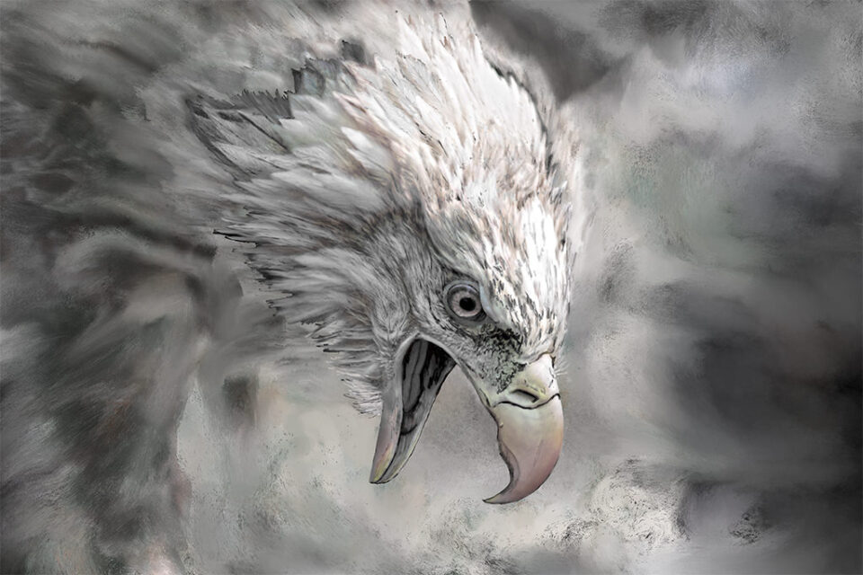 Painted Photo of Angry Bald Eagle