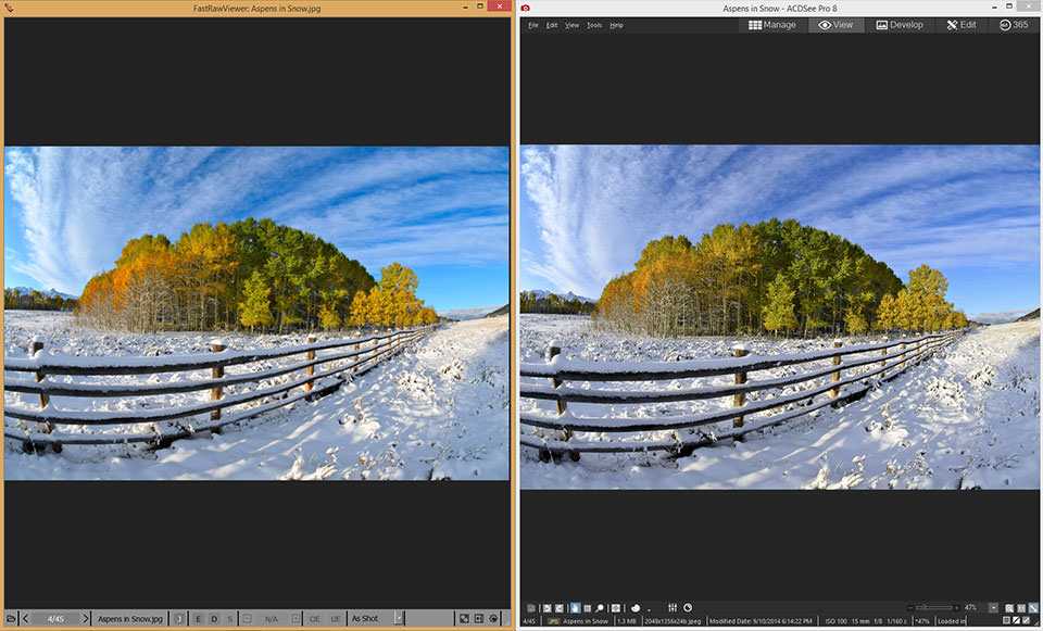 FastRawViewer Review: Best RAW Viewer for Your Workflow