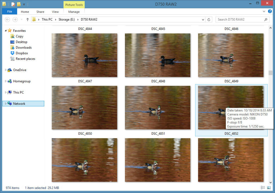 Microsoft Windows 8.1 RAW Image View