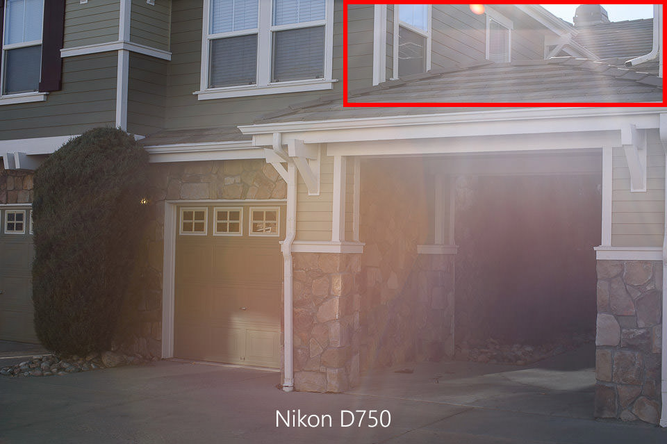 Nikon D750 Flare Outdoors