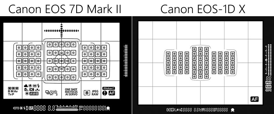 Canon 7D Mark II Review - Image Sensor, AF and Metering Performance