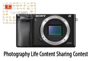 Photography Life Content Sharing Contest