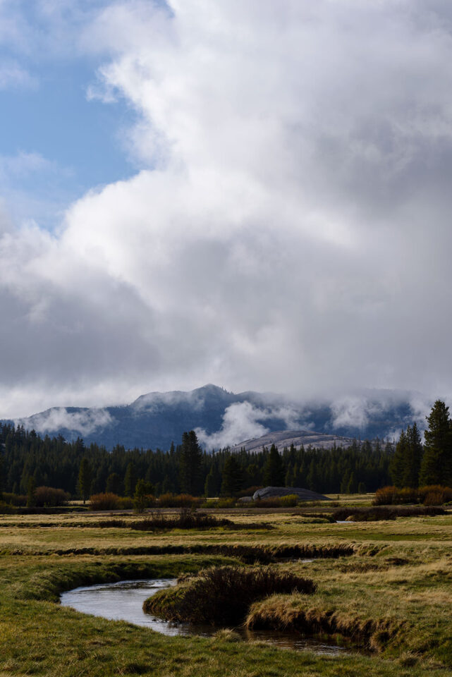 Tuolumne Meadows #2