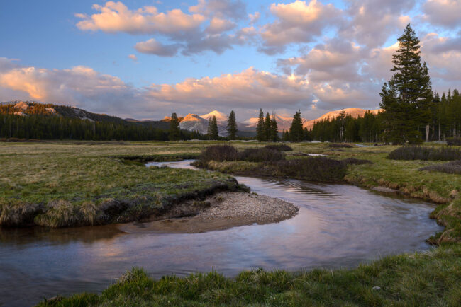 Tuolumne Meadows #1
