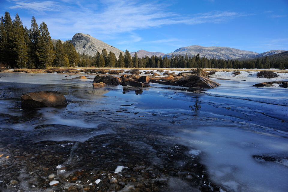 Tuolumne Meadows #3