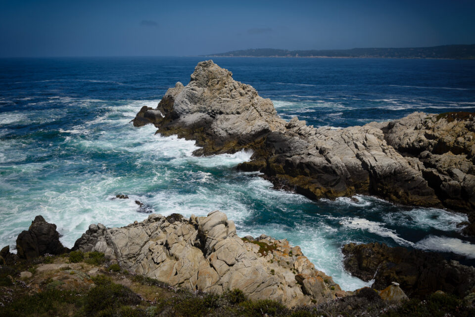 Point Lobos State Reserve #4