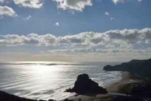 Piha Beach Area