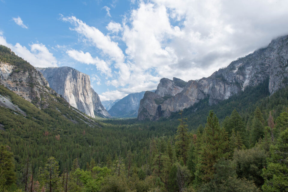 Yosemite Valley #4