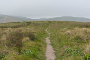 Point Reyes National Seashore #1