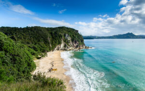 Hidden New Zealand North Island Beaches – Lonely Bay