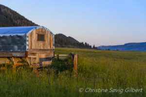 Steamboat Springs Wagon Stay