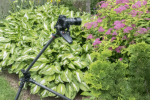 Oben CC-2361L Tripod Review: A Cure for My 'Tripodiphobia'