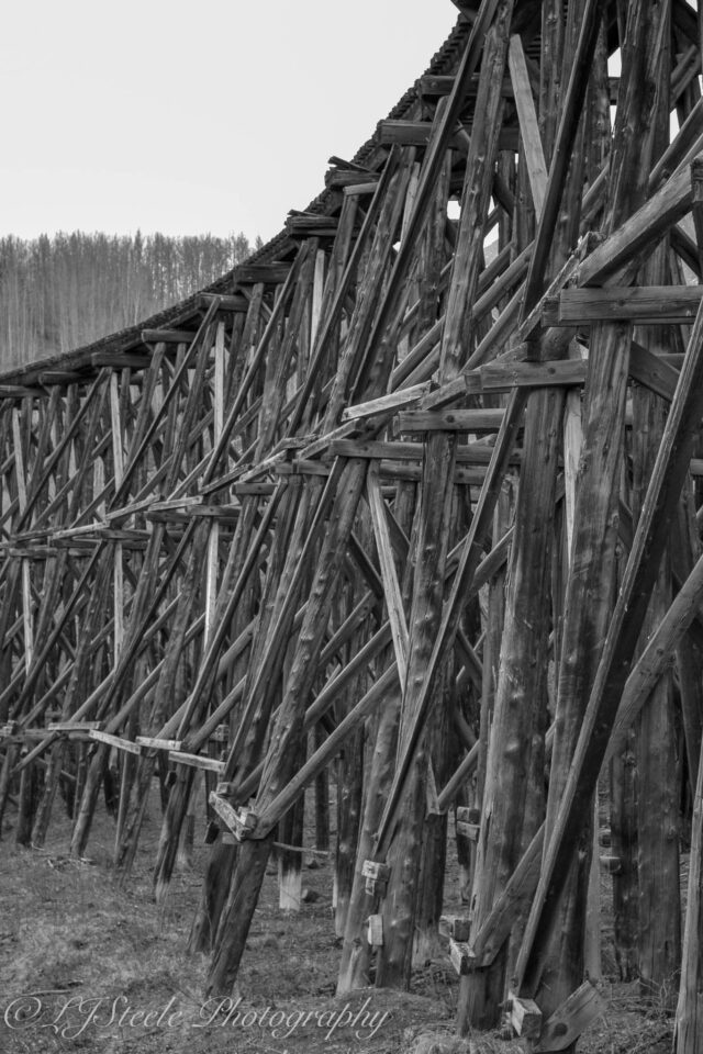 Old Gulihina Bridge ...left overs from the 1911 railway.