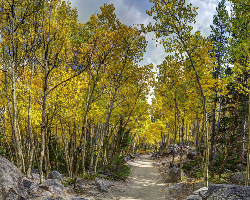 16 Aspen Trail Panorama