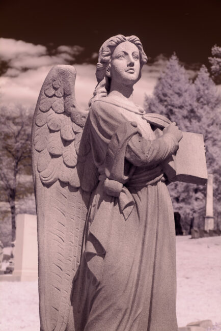 Infrared Angel - Camera LCD