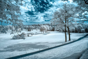 How to Process Infrared Photographs