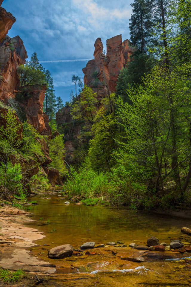 Oak Creek Canyon #2