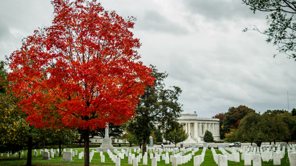 arlington-national-cemetery-1