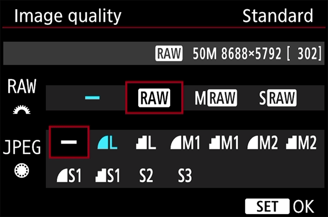 Canon RAW Format Menu