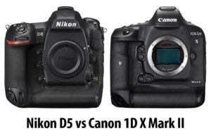 Nikon D5 vs Canon 1D X Mark II